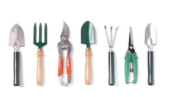 Les outils indispensables pour un jardinier amateur